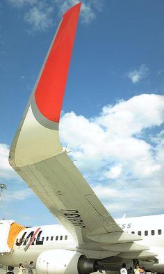 "JAL_Express_Boeing737-800""JA313J""'s_winglet.jpg (480×800)"