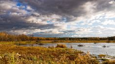 Autumn in Kampinos - Today stormy whether give a chance to take pictures like this. Autumn on Mokre Łąki near Truskaw