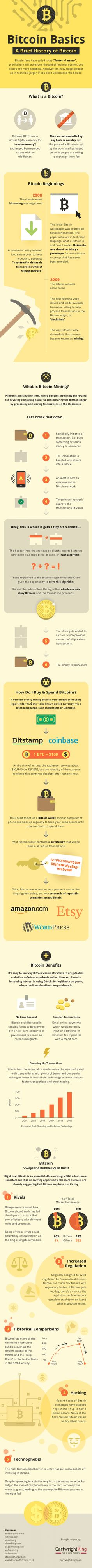 Bitcoin Explained: Get to Know the Basics - #infographic / Digital Information World