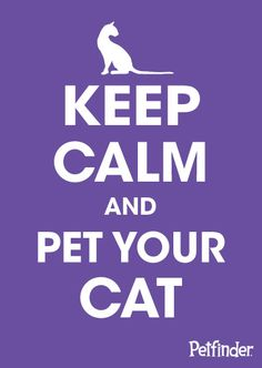Cats are pretty good stress relief if you ask us.
