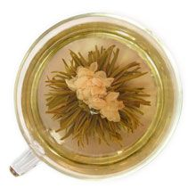 Meant to delight your eyes as well as taste buds, these awe-inspiring display teas unfurl when added to water, revealing delicate flowers hidden within. Tea Display, Apple Tea, Jasmine Tea, Tea Cookies, Fruit Tea, Tea Gifts, Flower Tea, Recipe Collection, Yummy Drinks