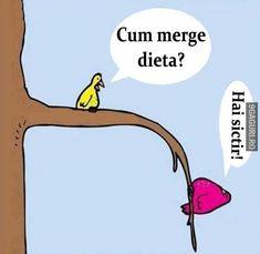 ideas diet humor funny hilarious jokes for 2019 Funny Diet Quotes, Funny Jokes, New Year Quotes Funny Hilarious, Funny Gym, That's Hilarious, Freaking Hilarious, Funny Cartoons, Funny Signs, Quotes Español