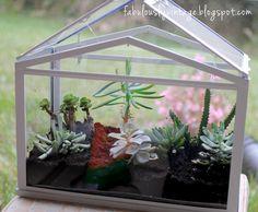 How To -- DIY Terrarium Greenhouse