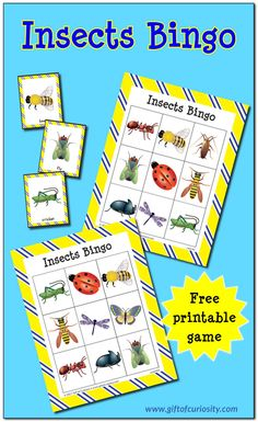 Free printable Insects Bingo game | Learn to identify 10 different insects | free insect printables || Gift of Curiosity