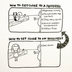 How to get close to an introvert: Approach slowly. Do not make eye contact. Stay very quiet. Avoid sudden movements. Offer food.