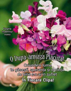 Dalai Lama, Plants, Samsung, Plant, Planets