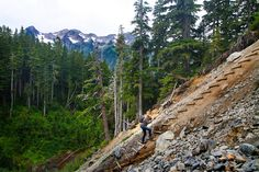 Hoh River Trail, Olympic National Park, Hoh Rainforest to Blue ...