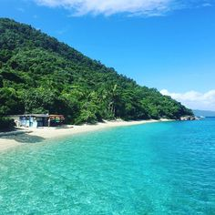 Tropical paradise Absolutely beautiful !! . . #fitzroyisland #greatbarrierreef #Australia #summer #snorkeling #wonderfulday by marinaaaara http://ift.tt/1UokkV2