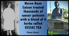 Rene Caisse was a Canadian nurse who dedicated her life to helping people with cancer and other afflictions through the use of Essiac Tea. http://essiacfacts.com/