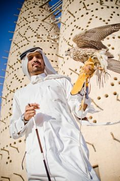Arabia | Falconry went back some 2000 years to a time when falcons were used to capture meat for the pantry. Even today almost every Arab family has at least one falcon. There are probably 50,000 of them in Saudi, Qatar and the UAE. But now they are used for sport and for beauty contests.