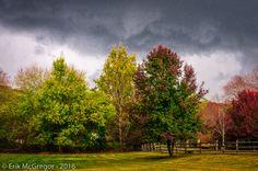 FABULOUS BAD WEATHER - Composition Tuesday #PhotoOfTheDay #rain #clouds #storm #autumn #fall #LeafTurning #foliage #trees #outdoors #climate #weather #NewYork #Ramapo #Ramapough #NaturePhotography #LandscapePhotography #photography #Nikon #NikonPhotography #art #ErikMcGregor #2016  © Erik McGregor - erikrivas@hotmail.com - 917-225-8963