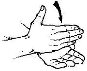 """stop"" American Sign Language (ASL)found at http://www.lifeprint.com"