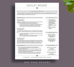Creative Resume Template For Word And Pages    And  Page