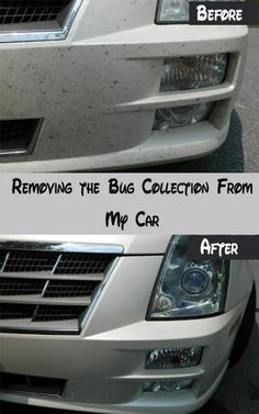 Tips to remove car body dead bug 20 car cleaning detailing tips 21 excellent diy car cleaning tips hacks excellent and pretty useful cleaning tips solutioingenieria Gallery