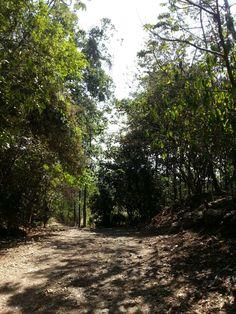 Super natural! Costa Rica