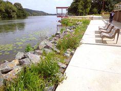 Revalorisation de l'ancienne piscine d'été de Vernon (27) - Enrochement planté de plantes hélophytes