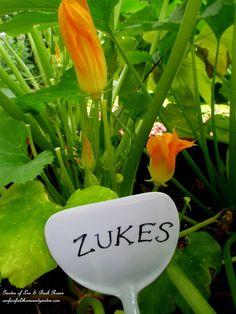 Dollar Store Spatula PLant Marker ~ Kitschy Kitchen Garden Accents   http://ourfairfieldhomeandgarden.com/kitschy-kitchen-garden-accents/
