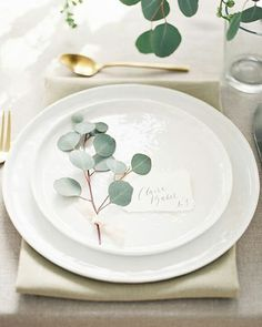 Cada vez tengo más claro que el eucalipto tendrá mucho protagonismo en mi boda ❤  #instawedding #weddingblog #wedding #banquete  #boda #bodasvalencia #bodas2016 #minimalismo #centrodemesa #eucalipto #algonuevoalgoprestadoyalgoazul