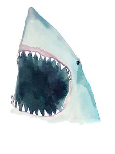 shark print - illustrated by happy menocal