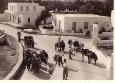 Yoga Retreat Center, Greece Pictures, Paros Greece, Paros Island, Greek Islands, Vintage Pictures, Athens, Old Photos, The Past