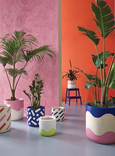 Tropical Patterned Planters Guide - Homestyle New Zealand Painted Plant Pots, Diy Home Decor, Room Decor, Beton Design, Pottery Painting, Plant Decor, Decoration, House Colors, Flower Pots