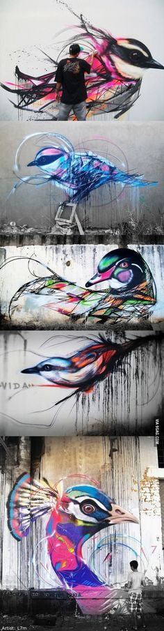 Beautiful graffiti birds by Brazilian street artist L7m. #ModernArt #StreetArt