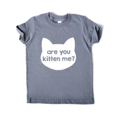 Are You Kitten Me? Tee Shirt - Slate Gray