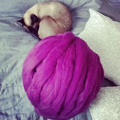 Playing with yarn 😉