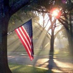 So beautiful our flag with the sun shining upon it.