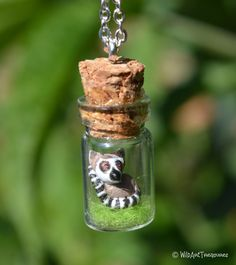 Bottle Necklace: Ring-tailed Lemur - pinned by pin4etsy.com