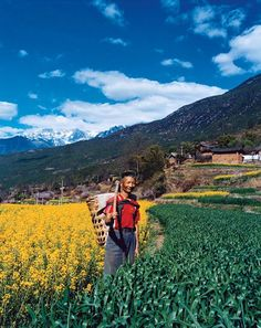This village near the town of Lijiang is positively modern (note the power lines) compared with the more northern areas of Yunnan Province, where life, for better or worse, has largely stood still