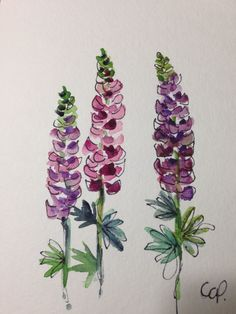 Lupine Watercolor Card by gardenblooms on Etsy