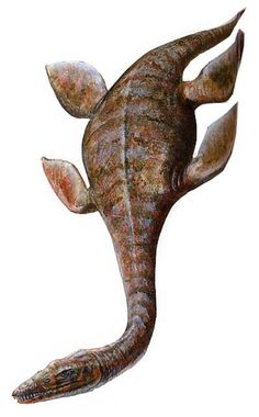 """Art illustration - Aquatic Reptile - Macroplata:(""""large sheet"""") is an extinct genus represented by a single species of basal romaleosáurido pliosauroide who lived in the Lower Jurassic in the UK, who came to grow up to 5 meters long."""