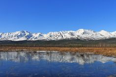 Morning Ice (flood snow Spring mountains sky trees water ). Photo by katy99780