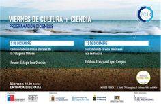 Programación Viernes de Cultura + Ciencia #gratis #viñadelmar @museofonck @museosdechile