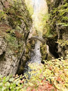 19 beautiful and easy autumn hikes Switzerland - hiking in autumn Places In Switzerland, Swiss Travel, Swiss Alps, Short Trip, Train Travel, Hiking Trails, Wonderful Places, Beautiful Landscapes, Adventure Travel
