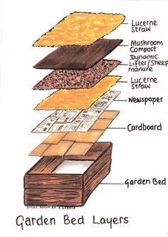 How To Make Raised Garden Beds For Vegetables - The Greening of Gavin