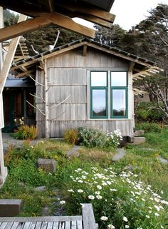 Wild meadow backyard landscaping ideas ; Gardenista