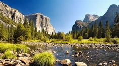 Merced River and El Capitan at Yosemite National Park ,Yosemite. Merced River and El Capitan at Yosemite National Park , List Of National Parks, Most Visited National Parks, The Tourist, Nationalparks Usa, California Tourist Attractions, Yellowstone Nationalpark, Las Vegas, Merced River, Perfect Road Trip