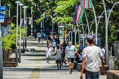 Bulevar del Río, el espacio que le cambio la cara a #Cali #PorCaliLoHagoBien #MiCaliSoñada Street View, Bridges, Walks, Parks, Space, Cities