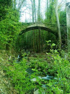 """Το γεφύρι του """"Μίχου""""  Δράκεια , Πηλίου  The Mixou arched stone bridge in Drakeia Pilion. Greece"""