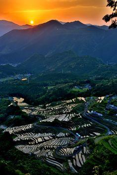 Sunset in Maruyama senmaida-Terraced rice fields, Kumano, Mie, Japan