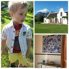 Wine Farm Button Down Shirt, Men Casual, Wine, Mens Tops, Shirts, Fashion, Moda, Dress Shirt, Fashion Styles
