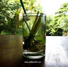 Kuliner Yogyakarta yang Unik dan tidak Mainstream
