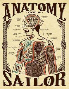 A sailor anatomy