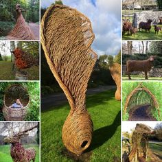 Design Ideas from Jo-anne Foxcroft. We can commission willow sculptures for your outdoor space