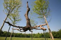"""giuseppe penone arbre"""