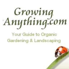 In-depth companion planting charts with full list of garen crops along with why following a companion planting list can help your garden.