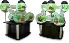 7 Amazing Aquariums and Fish Tank Designs & Systems | Urbanist