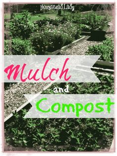 Mulch and Compost l What are mulch and compost and why use them l Homestead Lady (.com)